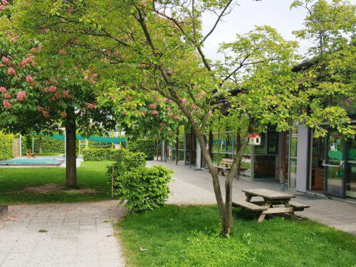 Kastaienblüte